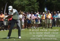 #Tiger Woods – Golf Swing Classics
