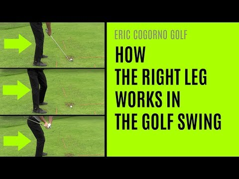 GOLF: How The Right Leg Works In The Golf Swing